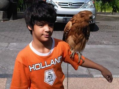 Anugerah and owl