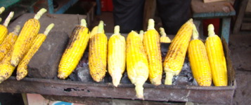 Grilled corn at Coban Rondo waterfall