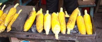 Grilled corn at Coban Rondo waterfall