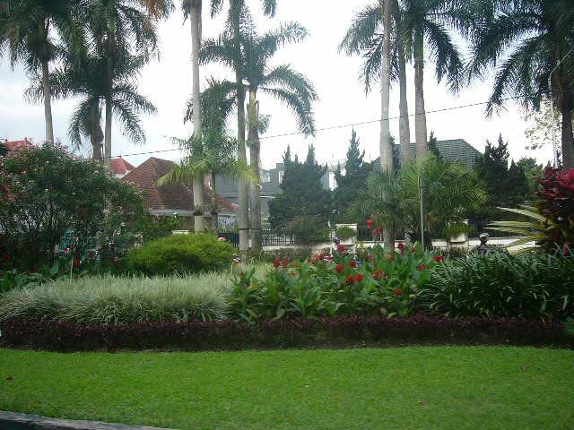 Garden at Ijen street