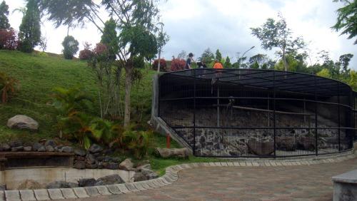 Monkeys cage in Villa Puncak Tidar Malang