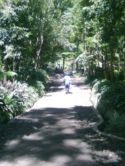 Path to Coban Rondo waterfal