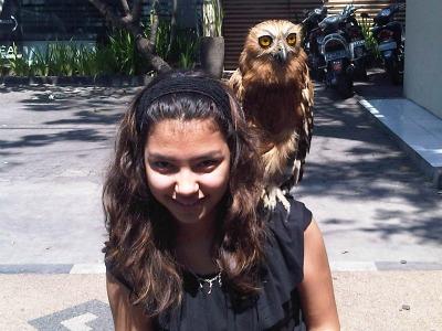 Pelangi and owl