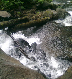 A small creek at Coban Ondo waterfall