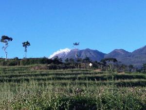 Smoke up the mountain in Cangar